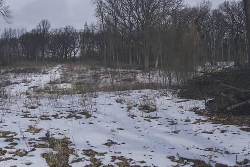 Lot A Ridge, Crystal Lake, IL 60014