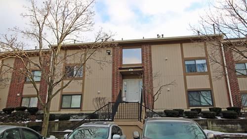 387 Wilmington Unit 102B, Bartlett, IL 60103