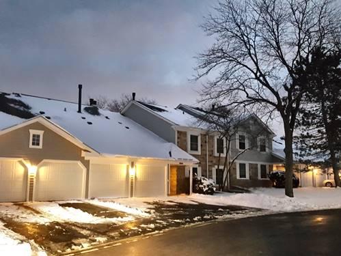 1115 Auburn Unit 0, Buffalo Grove, IL 60089