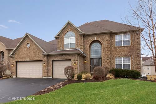 13602 Rockefeller, Plainfield, IL 60544
