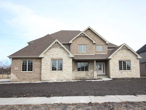 22119 Mary, Frankfort, IL 60423