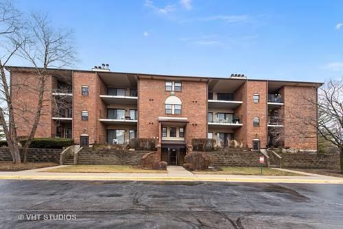 720 Weidner Unit 305, Buffalo Grove, IL 60089