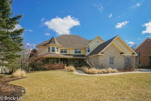 11437 Swinford, Mokena, IL 60448