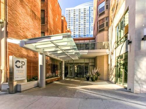8 W Chestnut Unit 18D, Chicago, IL 60610 Gold Coast