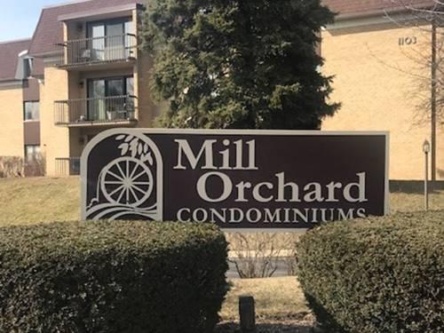 1105 N Mill Unit 219, Naperville, IL 60563