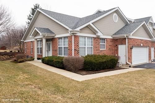 7215 Chestnut Hills, Burr Ridge, IL 60527