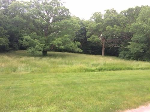 LOT 1 Boundary Hill, Woodridge, IL 60517