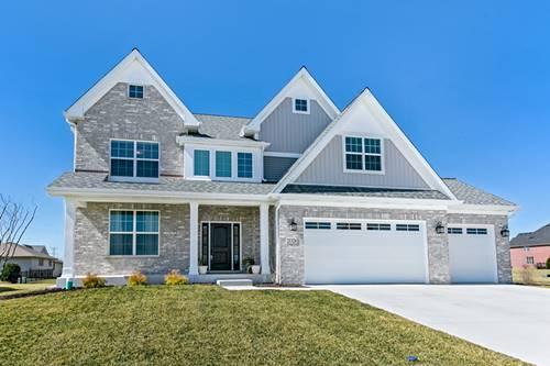 21324 Somerset, Shorewood, IL 60404