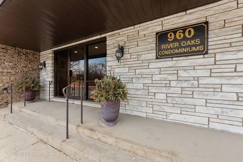 960 S River Unit 102, Des Plaines, IL 60016