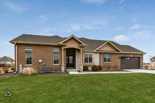 8906 Holland Harbor, Frankfort, IL 60423