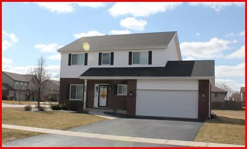 869 S Anderson, New Lenox, IL 60451