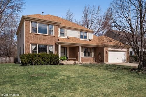 646 Raintree, Buffalo Grove, IL 60089