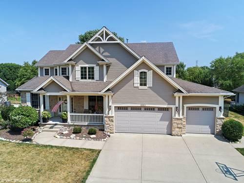 15953 Hometown, Plainfield, IL 60586