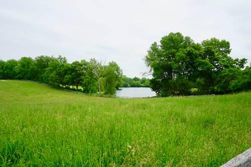 271 Donlea, Barrington Hills, IL 60010