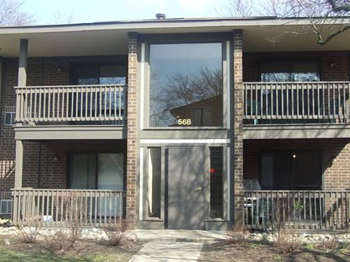 568 Somerset Unit 7, Crystal Lake, IL 60014