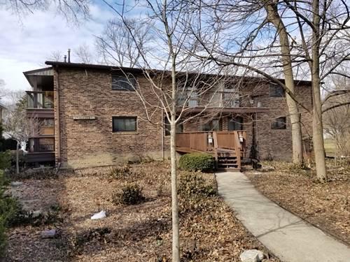 17704 Dixie Unit 1A, Homewood, IL 60430