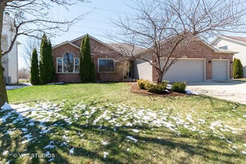 13332 Blackstone, Plainfield, IL 60585
