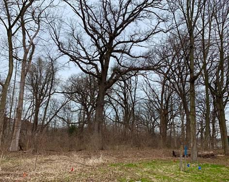 822 Hoyden, Sugar Grove, IL 60554