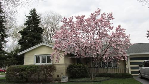 236 Placid, Elk Grove Village, IL 60007
