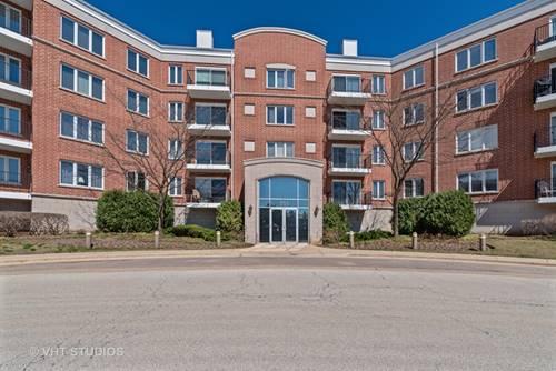 351 Town Unit 308, Buffalo Grove, IL 60089
