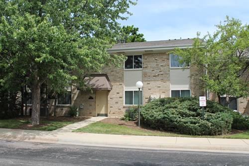 1755 Robin Walk Unit A, Hoffman Estates, IL 60169