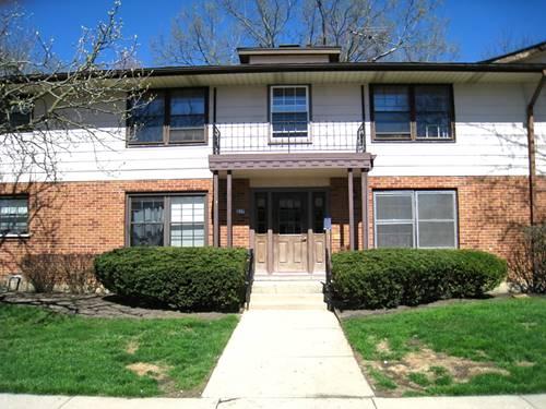 217 Washington Unit D, Elk Grove Village, IL 60007