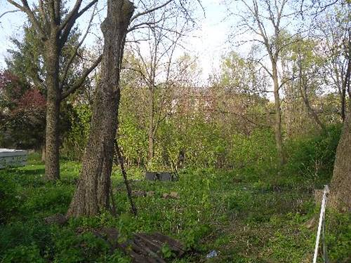 Lot 11 Gracy, Woodstock, IL 60098