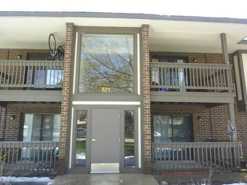 571 Somerset Unit 8, Crystal Lake, IL 60014