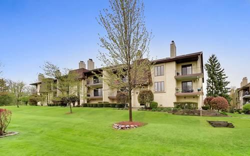 9169 Del Prado Unit 1E, Palos Hills, IL 60465