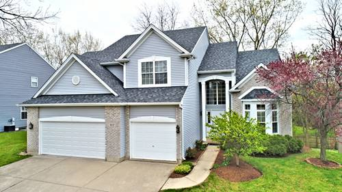 917 Chancery, Cary, IL 60013