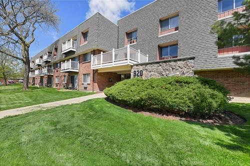 920 Ridge Unit 203, Elk Grove Village, IL 60007