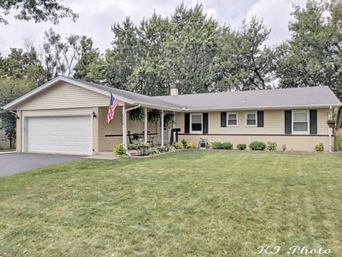 254 Placid, Elk Grove Village, IL 60007