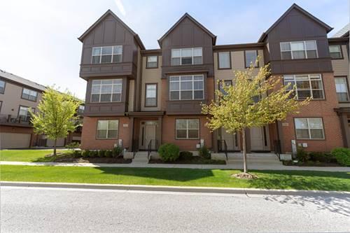 323 Aspen Pointe, Vernon Hills, IL 60061