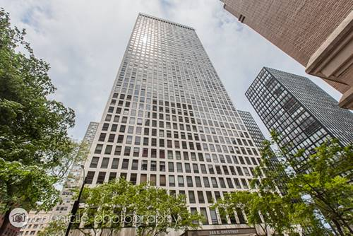 260 E Chestnut Unit 3201, Chicago, IL 60611 Streeterville