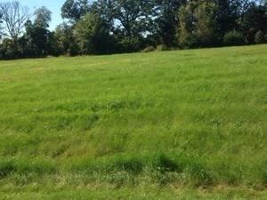 11217 Hill Crest, Marengo, IL 60152