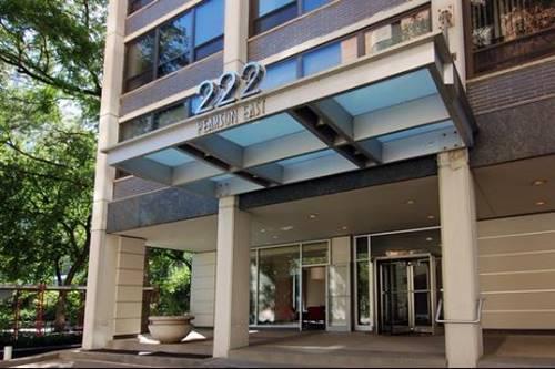 222 E Pearson Unit 1105, Chicago, IL 60611 Streeterville
