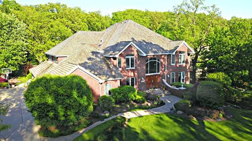 51 Silo Ridge, Orland Park, IL 60467