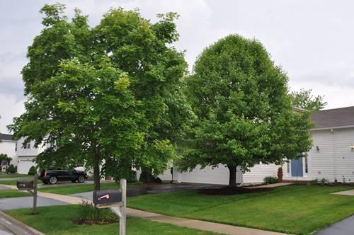 2318 Carpenter, Plainfield, IL 60586