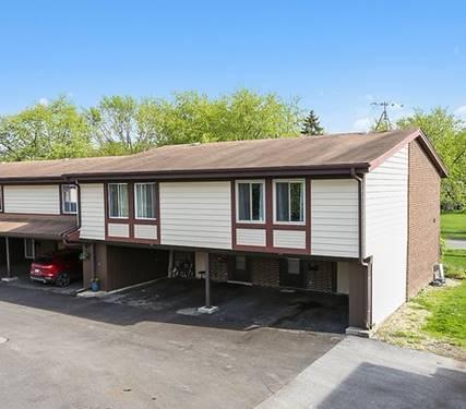 13 Cour Michele, Palos Hills, IL 60465