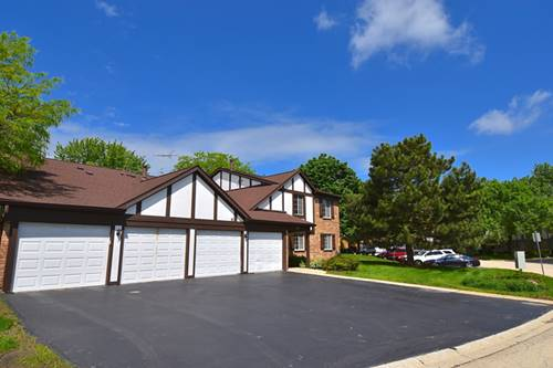 1228 Williamsport Unit 4, Westmont, IL 60559