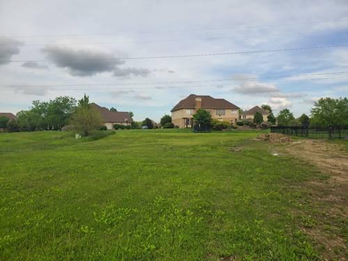 22985 Devonshire, Frankfort, IL 60423