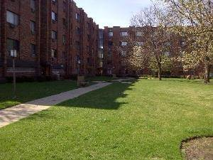 5310 N Chester Unit 209, Chicago, IL 60656 O'Hare
