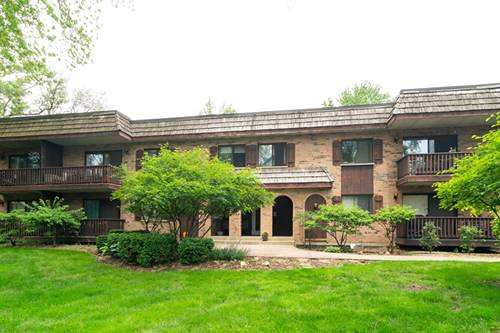 7920 Woodglen Unit 201, Downers Grove, IL 60516