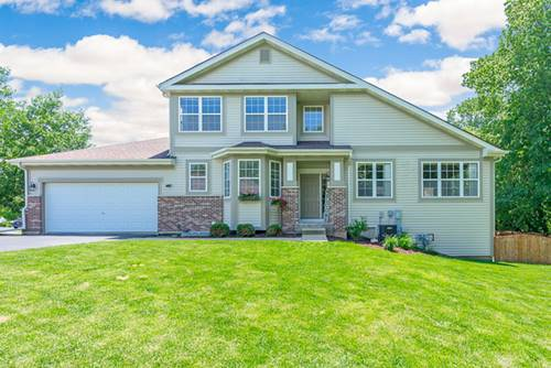 26110 W Timber Ridge, Channahon, IL 60410