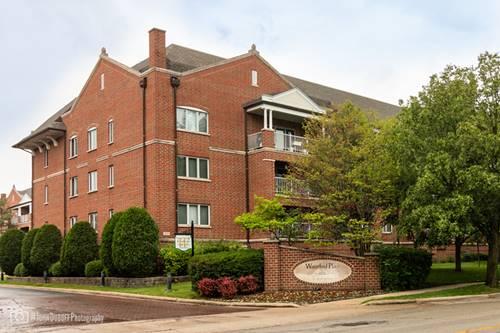 460 S Northwest Unit 413A, Park Ridge, IL 60068