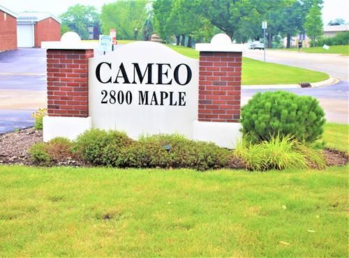 2800 Maple Unit 25C, Downers Grove, IL 60515