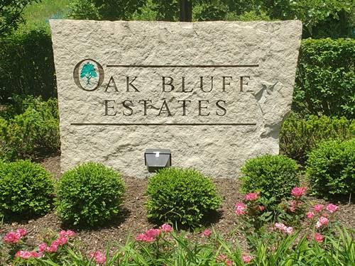 LOT 17 Oak Bluff, Woodridge, IL 60517