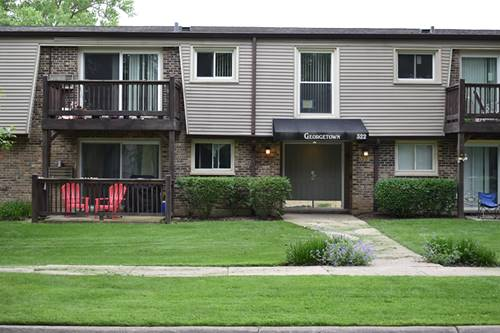 322 N Carter Unit 203, Palatine, IL 60067