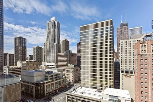 535 N Michigan Unit 1710, Chicago, IL 60611 Streeterville