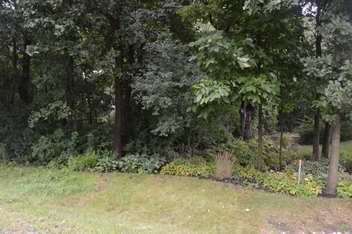 Lot 9 Shade Tree, Lakewood, IL 60014